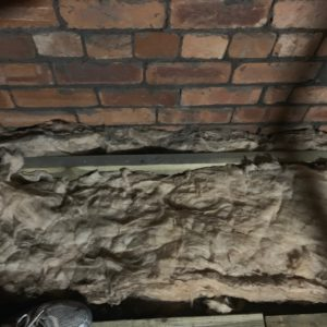 Insulation laid back out between the joists